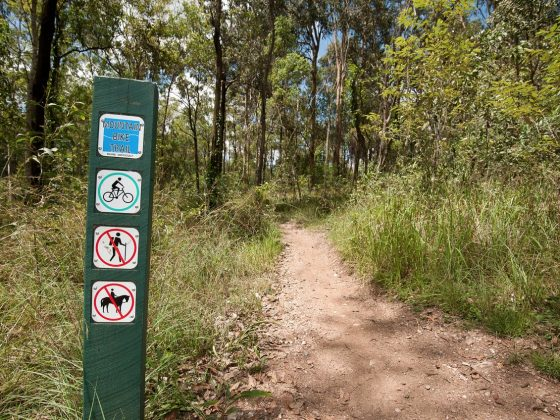 Brisbane MTB Trails – Best Mountain Biking Trails In Brisbane